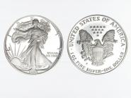 USA 1 Dollar Silver Eagle 1989 PP (proof)