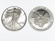USA 1 Dollar Silver Eagle 1988 PP (proof)
