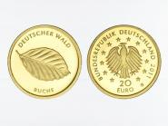 BRD 20 Euro Gold, 2011 D,  Deutscher Wald Buche