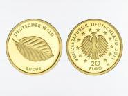 BRD 20 Euro Gold, 2011 F,  Deutscher Wald Buche