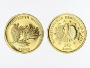 BRD 20 Euro Gold, 2013 F,  Deutscher Wald Kiefer