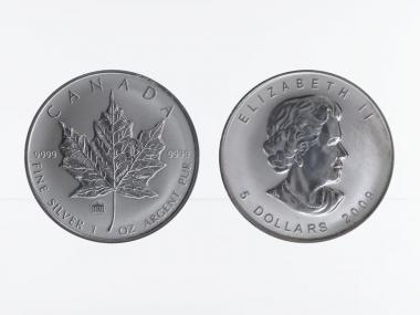 Kanada 5$ Maple Leaf 2009, Privy Mark  Brandenburger Tor