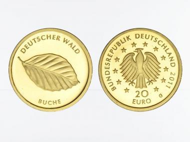 BRD 20 Euro Gold, 2011 G,  Deutscher Wald Buche