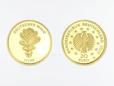 BRD 20 Euro Gold, 2010,  Deutscher Wald Eiche ohne (B+C)