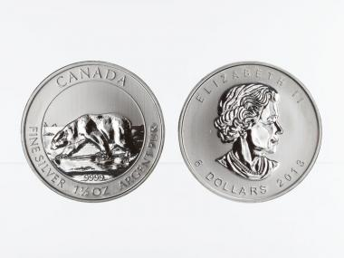 Kanada 8$  Wildlife Polarbär ,  1 1/2 oz  2013