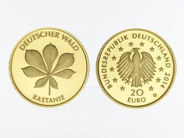 BRD 20 Euro Gold, 2014 F,  Deutscher Wald Kastanie