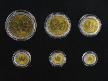 Kanada Maple Leaf 25 Jahre, 1/25oz- 1oz, 6 Münzen Bimetall