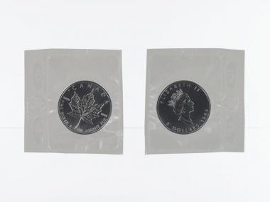 Kanada 5$ Maple Leaf 1993, 1 oz  Silber Folie