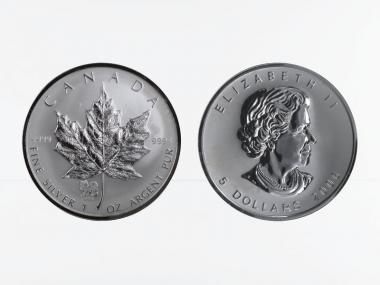 Kanada 5$ Maple Leaf 2006, Privy Mark  Hund