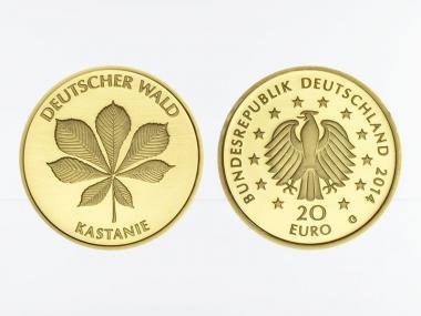 BRD 20 Euro Gold, 2014, Deutscher Wald Kastanie ohne Zertifikat