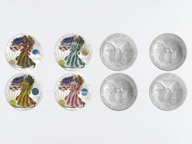 USA 1 Dollar Silver Eagle 2004, Four Seasons, farbig 4 oz